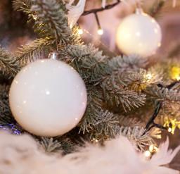 rabobank-amerstreek-09-12-2010-fg-deboerfotografie_rabobank040-kerstballen-kerstboom