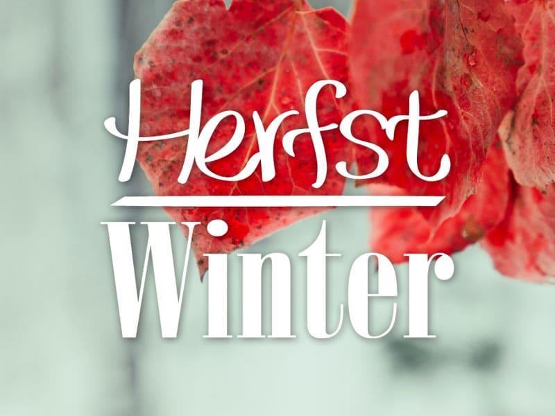 HERFST/WINTER ARRANGEMENTEN